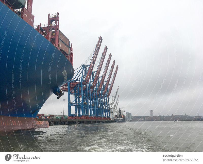 Cornern an der Elbe. Hamburg Hafen Kran Wasser Himmel schlechtes Wetter Wolken Schifffahrt Containerschiff Güterverkehr & Logistik Hafenstadt Außenaufnahme