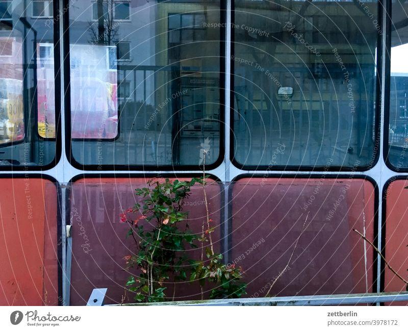 Kabine mit großen Fenstern haus bude pförtner pförtnerloge kabine fenster glas schaufenster glasfenster kontrolle alt ruine industrie fabrik zugang
