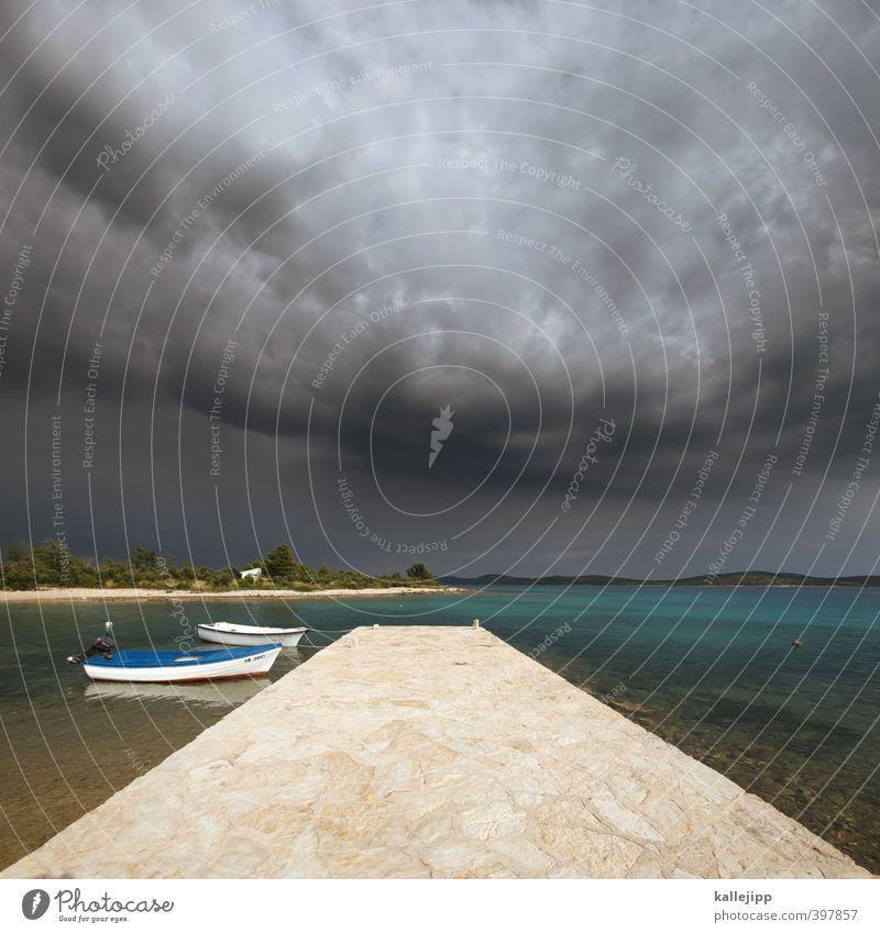 donnerwetter Himmel Natur Wasser Pflanze Sommer Meer Landschaft Wolken Tier Umwelt dunkel Küste Stein Wasserfahrzeug Horizont Luft