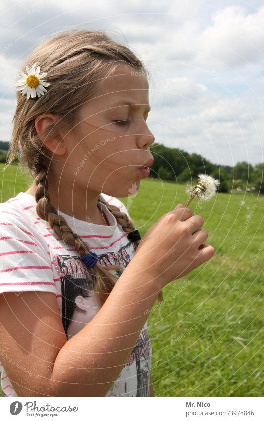 Pusteblume Sommer Frühling pusten Freude Naturliebe Lebensfreude Blume Löwenzahn authentisch Pflanze Wildpflanze zart leicht Wiese natürlich Blüte Mädchen Gras