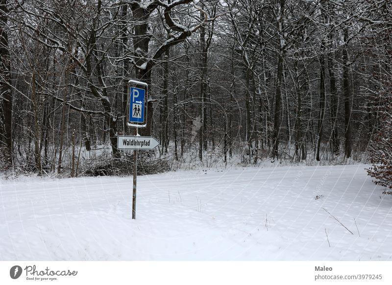 Wanderweg im Wald - Waldlehrpfad Natur wandern Weg Nachlauf Landschaft Wildnis Umwelt Park grün Licht Straße Spaziergang malerisch schön sonnig natürlich Saison