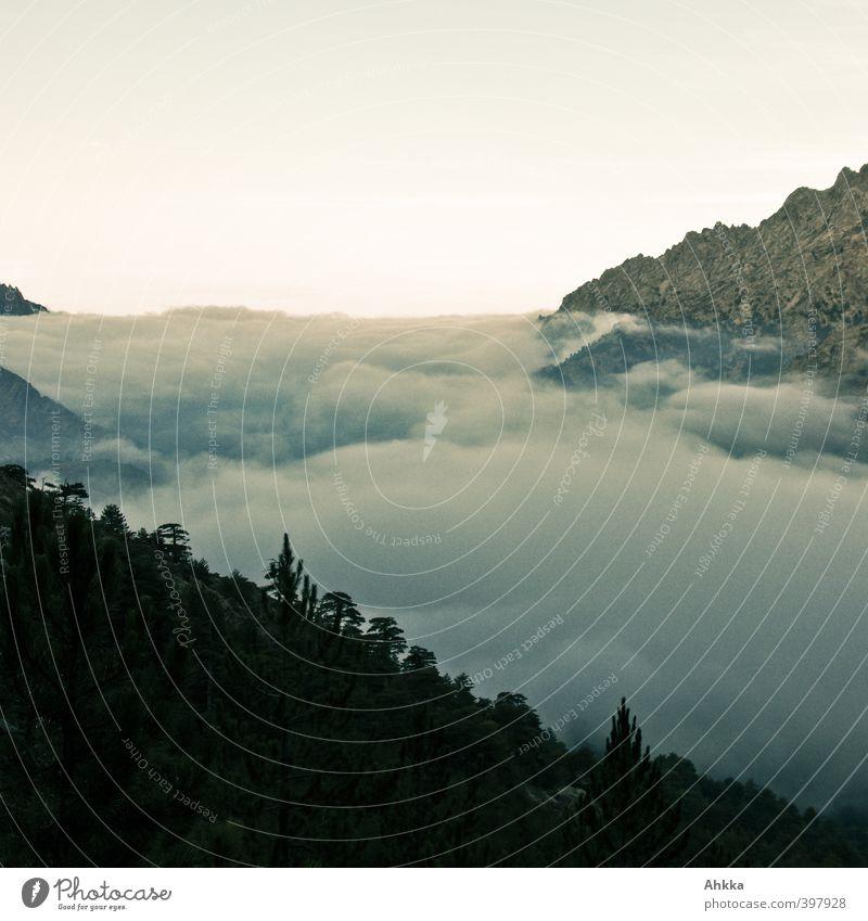 Ein Tal in Korsika verbirgt sich unter einer Wolkendecke Himmel Natur Ferien & Urlaub & Reisen Einsamkeit Landschaft Ferne Berge u. Gebirge Bewegung Freiheit