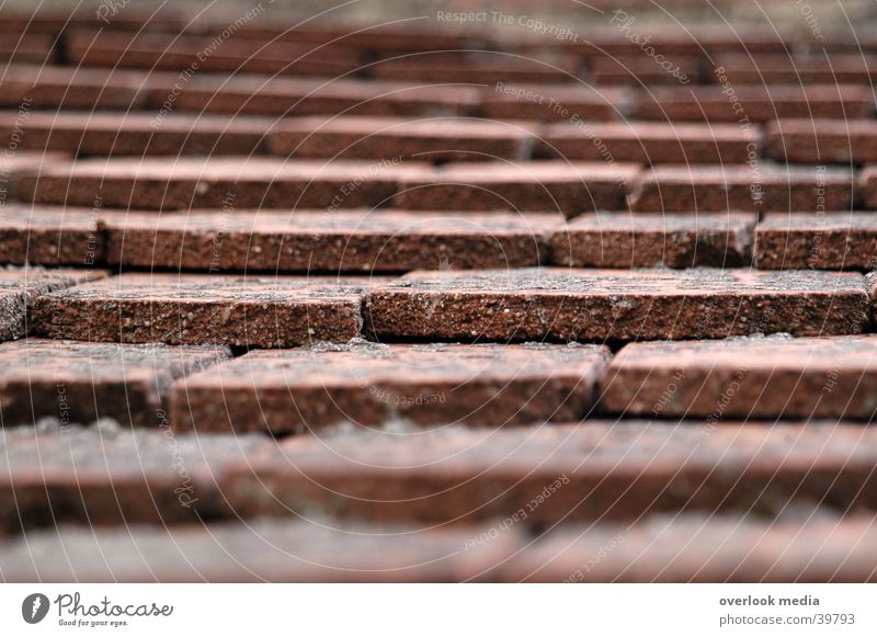 Dachziegel Haus rot Architektur Tiefenunschärfe