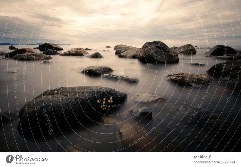 ruhige See mit Steinen bei Sonnenaufgang oder Sonnenuntergang, Langzeitbelichtung von Felsen im glatten Wasser MEER Windstille Erholung goldene Stunde Morgen