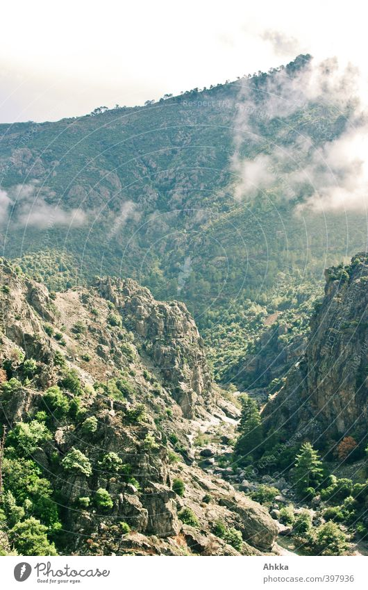 Canyon in Korsika Natur Ferien & Urlaub & Reisen Landschaft Ferne Berge u. Gebirge Freiheit Stimmung Felsen Tourismus Angst Nebel Kraft wandern Beginn Ausflug