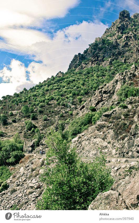 Mediterrane Landschaft in Korsika, Froschperspektive Himmel Natur Ferien & Urlaub & Reisen Ferne Berge u. Gebirge Gefühle Freiheit Kraft groß hoch wandern
