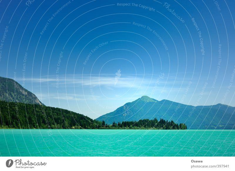 Walchensee Umwelt Natur Landschaft Pflanze Urelemente Wasser Himmel Wolkenloser Himmel Sommer Baum Wald Hügel Alpen Berge u. Gebirge Gipfel Seeufer authentisch