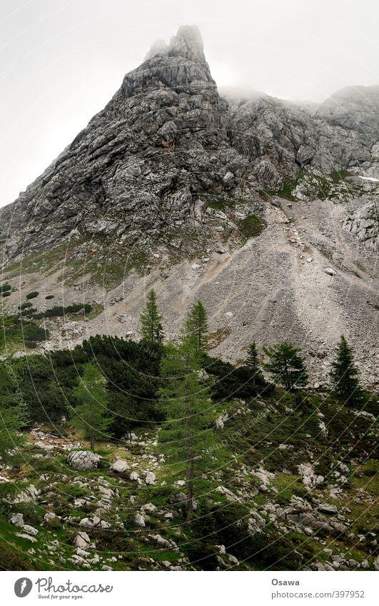 Kleine Reibn Ferien & Urlaub & Reisen Tourismus Ausflug Abenteuer Berge u. Gebirge wandern Umwelt Natur Landschaft Pflanze Baum Hügel Felsen Alpen Gipfel