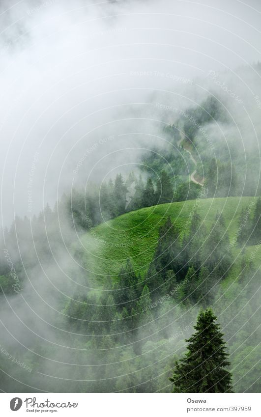 Nebelberg Umwelt Natur Landschaft Urelemente Luft Wasser Himmel Wolken Frühling Sommer Herbst Klima Klimawandel Wetter schlechtes Wetter Wind Regen Wiese Feld