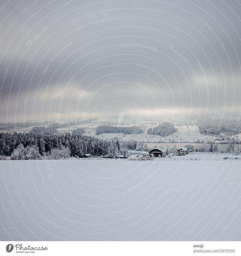 Baldeggersee CH im Winter winter schnee grau trist weiss lichtspiel sonnenstrahlen dämmerung schweiz kalt kühl düster wolken