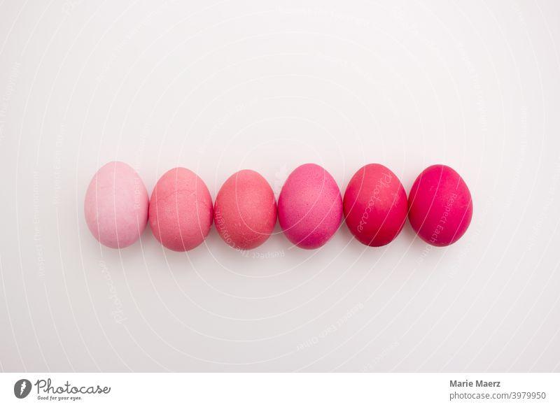 Reihe von 6 Ostereier in verschiedenen Rosa-Tönen von pastell bis pink auf hellem Hintergrund schön Feier Nahaufnahme Sammlung Farbe Textfreiraum