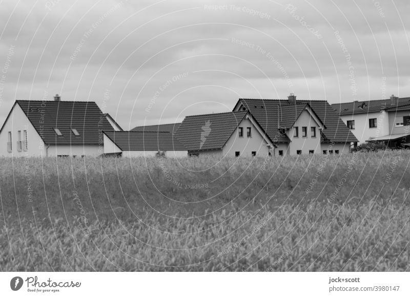 Neubaugebiet direkt am Getreidefeld Neubausiedlung Himmel Einfamilienhaus Sommer Unschärfe Regenwolken Wachstum Landschaft Klimawandel Landwirtschaft