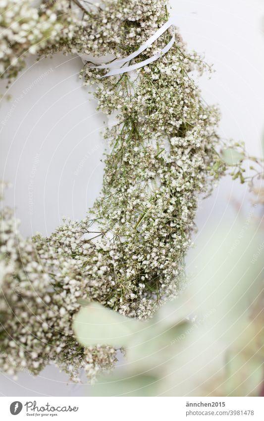 Ein halber Kranz aus weißem Schleierkraut und vorne recht sieht man verschwommen Eukalyptus Trockenblume kranz hochzeit Blume Blüte Farbfoto