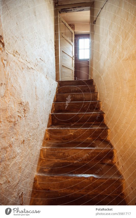 #A0# Kellertreppe mit Blick auf Kellertür Kellerwand Kellerabteil Bestandswohnung Treppe dunkel Tür Schatten Mietwohnung Altbau Altbauwohnung Altbausanierung