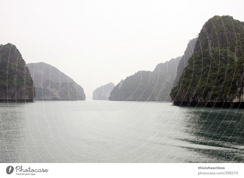 Rücken des Drachen Tourismus Ausflug Kreuzfahrt Meer Insel Natur Luft Wasser Sommer Klima Wärme Sträucher Hügel Felsen Berge u. Gebirge Halong Bay Bucht