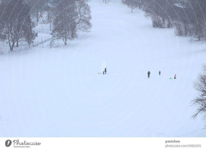 Eltern mit ihren Kindern auf einem rodelhügel im Winter Schnee kinder schlitten Rodelhügel freude spaß kälte eltern Kindheit