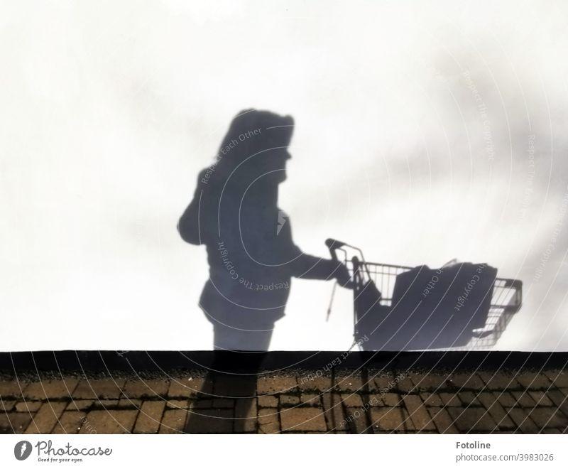Hamsterkauf - Fotoline schiebt mit ihrem Einkaufswagen an einer weißen Wand vorbei und wirft beeindruckende Schatten. Mauer Außenaufnahme Farbfoto Licht Tag