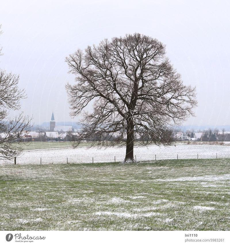 Blick durch zwei Bäume über leicht verschneite Wiesen und Felder auf die Kirche im Dorf Winter Winterstimmung trüb kalt Häuser leichter Schneefall Landschaft