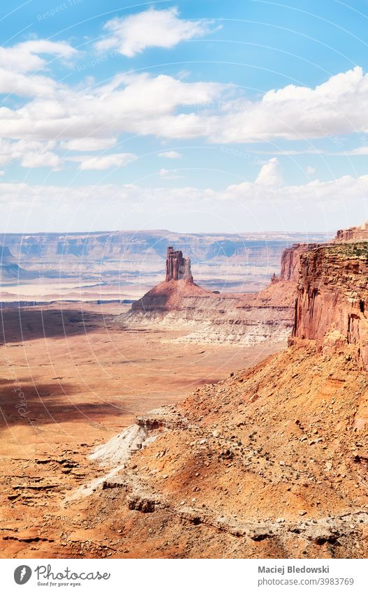 Panoramablick auf den Canyonlands National Park, Utah, USA. Landschaft Tal wüst Erosion Schlucht Natur Felsen Berge u. Gebirge Abenteuer amerika Klippe