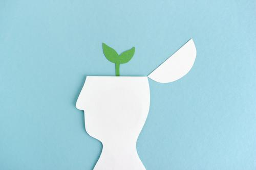 Gedanken wachsen lassen   Pflanze wächst aus Kopf-Silhouette Wachstum Entwicklung Gehirn Wissenschaften Studium Illustration Grafik u. Illustration