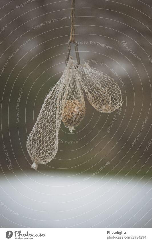 Meisenknödel und leere Futternetze an einem Karabiner Vogelfutter Netz Netze voll Außenaufnahme Farbfoto Tag Menschenleer Natur Tier füttern