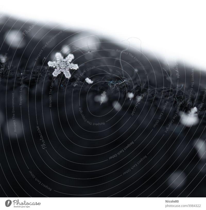 Schneeflocke auf schwarzem Strick Schneeflocke auf Stoff Winter kalt Eis Außenaufnahme Schneefall Frost Farbfoto zart zerbrechlich Eiskristall Menschenleer