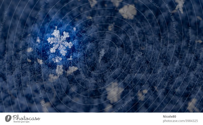 Schneeflocke auf blauem Fleece mit Spotlight Schneeflocke auf Stoff Winter kalt Eis Außenaufnahme Schneefall Frost Farbfoto zart zerbrechlich Eiskristall