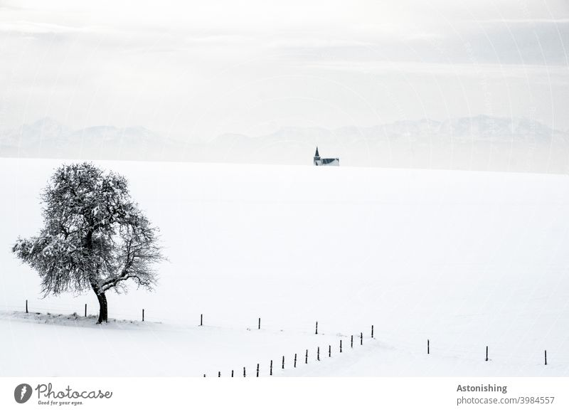 Baum-Kirche-Berge Schnee Landschaft Schichten Horizont Winterlandschaft Schneelandschaft Zaun Holz Gebirge Alpen Allerheiligen im Mühlkreis Turm Kirchturm