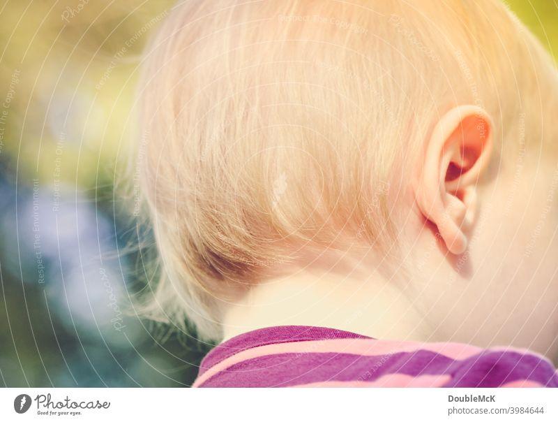 Der Hinterkopf eines Kleinkindes Mädchen Kindheit Mensch 1 1-3 Jahre Farbfoto Außenaufnahme Tag Wegsehen Schwache Tiefenschärfe feminin Freizeit & Hobby