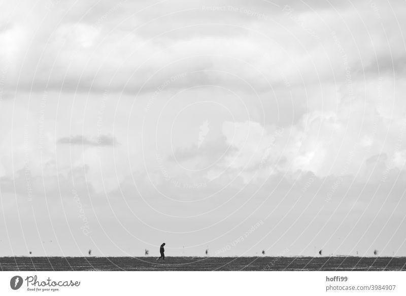 ein Mensch allein bei Ebbe im Watt 1 Einsam Einsamkeit Stille einsamkeit suchen Wattenmeer Wattwandern Wattwanderer Wattwanderung minimalistisch Minimalismus