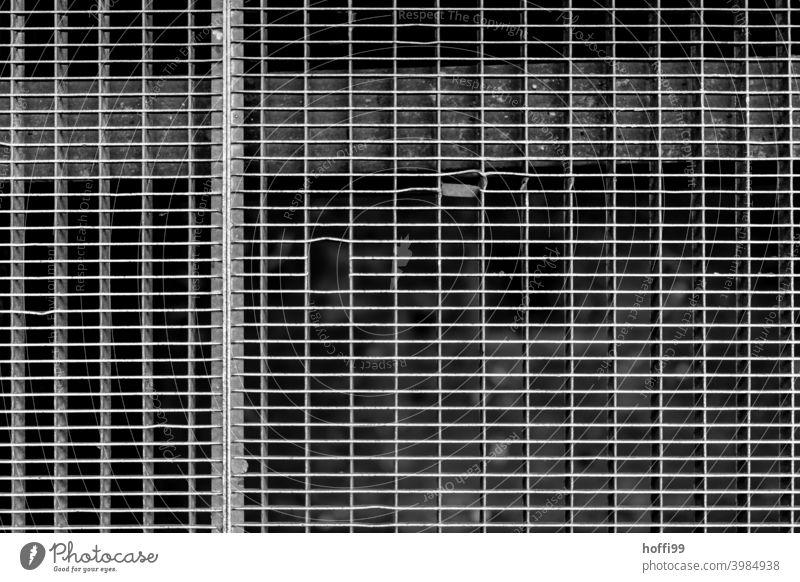 Gitterroste mit Lücken Raster grau Gitternetz Muster Metall Strukturen & Formen eckig abstrakt Linie Stahl Detailaufnahme Design Zaun