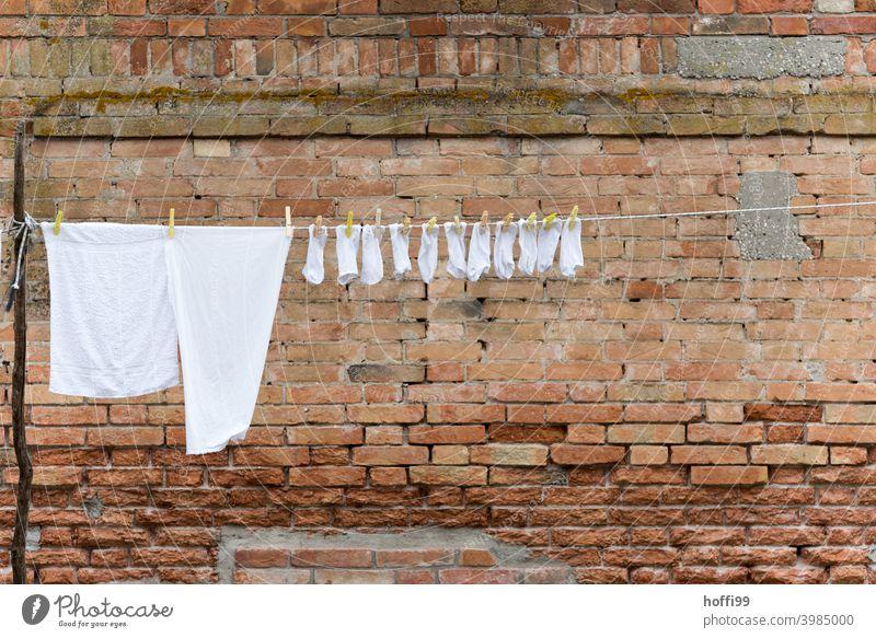 Weiße Wäsche an einer Wäscheleine vor einer alten Backsteinwand in der historischen Altstadt von Venedig Strümpfe T-Shirt Wäscheklammern hängen frisch