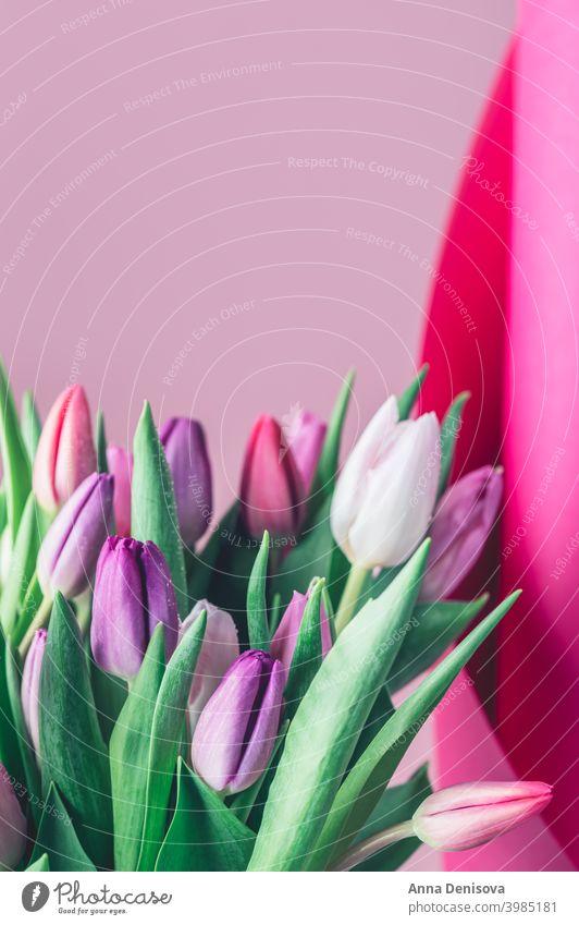 Bunter klassischer Tulpenstrauß Tag Haufen Blume Blumenstrauß Muttertag purpur rosa Natur Frühling grün 8. März schön Farbe Blüte Postkarte Sommer rot Geschenk