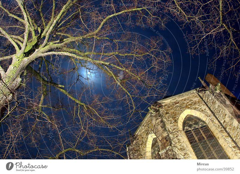 der mond träumt Baum Religion & Glaube Ast Statue Mond Gotteshäuser