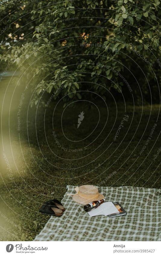 Langsamer Morgen Schatten Picknick Sommer Pause psychische Gesundheit Buch Lesen von Büchern Literatur Bildung Lesestoff Roman Urlaub Feiertag Garten