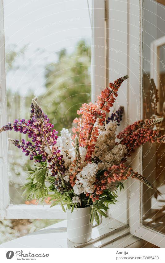 Sommerblumen Lupinen Vase Blume geblümt Blumenstrauß Fenster Morgen Sonnenlicht frisch Air Scheune Bauernhof Land
