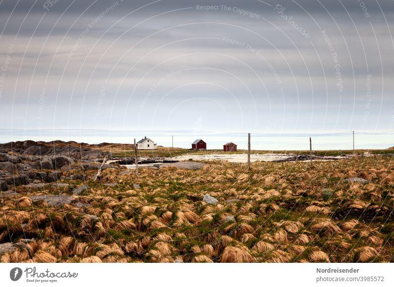 Einsame und abgelegene Farm auf den Lofoten in Norwegen Haus Meer Bauernhof Siedlung Dorf Moor Sumpf Häuser Scheune Landwirtschaft Küste Wasser ländlich surreal