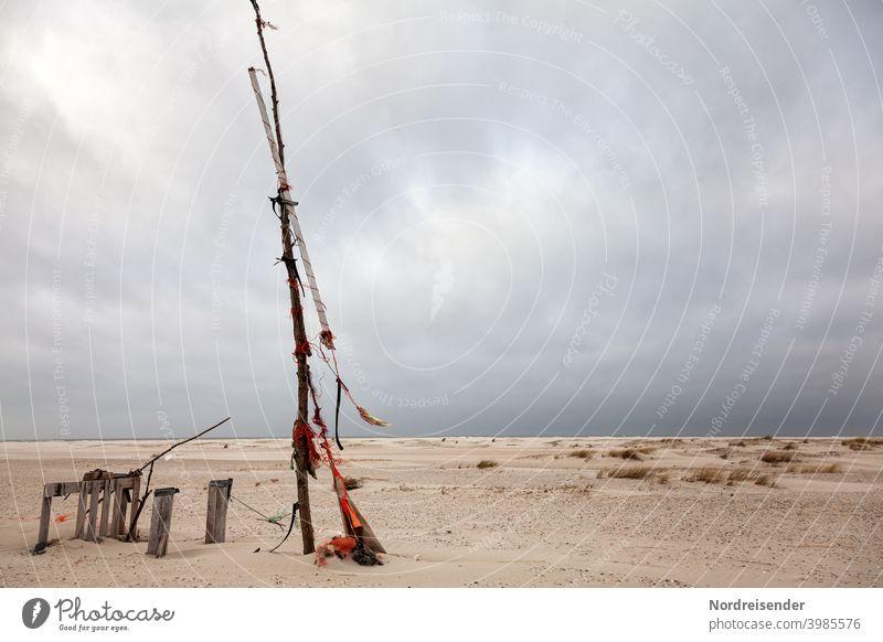 Strandgut am Strand der Nordsee auf Spiekeroog strand nordsee spiekeroog insel ostfriesland ostfriesische inseln meer strandgut treibholz strandburg treibgut