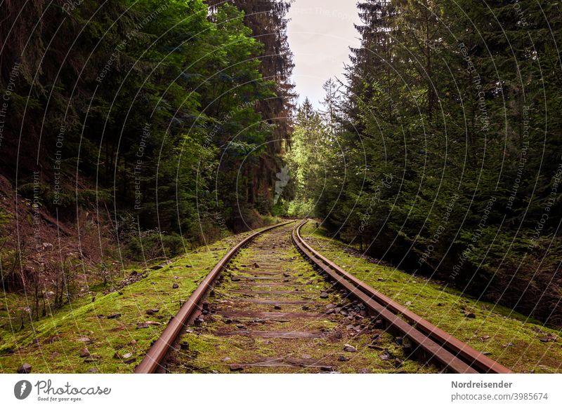 Stillgelegte Bahnstrecke im Thüringer Wald Schienen Gleis Eisenbahn stillgelegt Stilllegung Verkehr Infrastruktur Transport Eingleisig Nebenstrecke