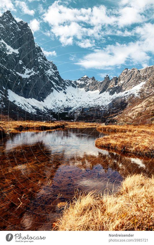 Frühling in einem Canyon mit Felswand und Gewässer auf den Lofoten in Norwegen Wasser Berge Schnee Felsen See Fluss schroff Gipfel Gras Wiese Spiegelung
