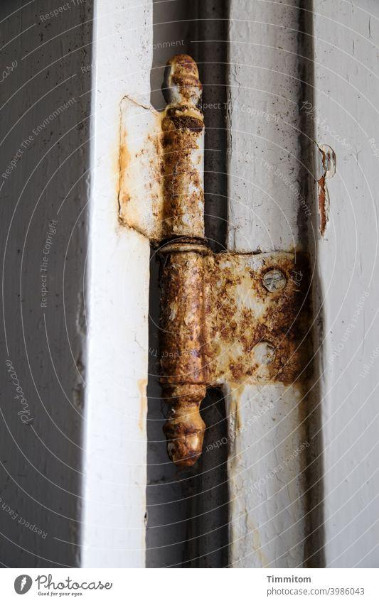 Gealtertes Scharnier rostig Schrauben Holz Metall Innenaufnahme Menschenleer Linien Detailaufnahme Rost Vergänglichkeit Verfall Lack