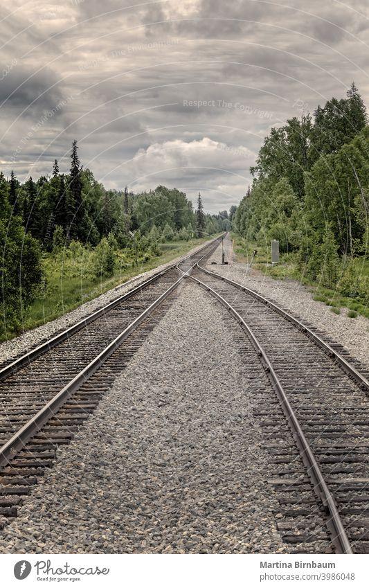 Zwei Schienenstränge werden in der Wildnis Alaskas zu einem. Konzept des Zusammenwachsens Depression traurig fusionieren Schalterständer Position der Punkte