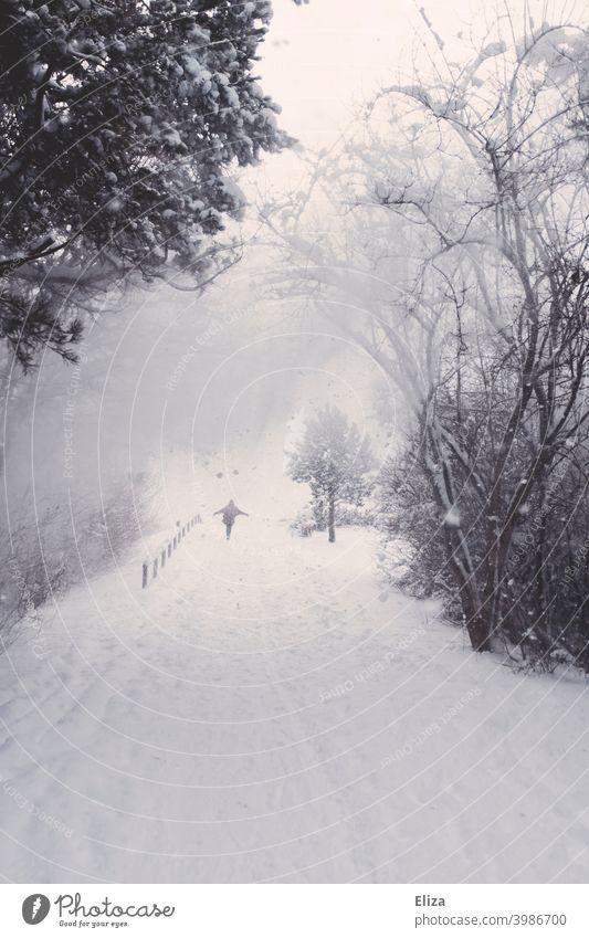 Schneetreiben - Eine Person in einer verschneiten Winterlandschaft Weg Natur Wald WInter Schneefall kalt Landschaft weiß Schneelandschaft Umwelt Bäume