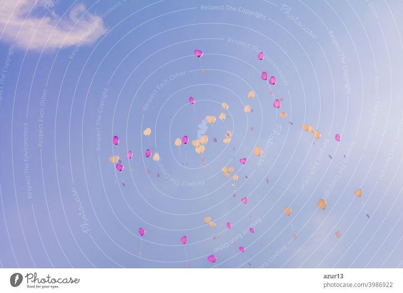 Herz Liebe Ballons fliegen in den blauen Himmel mit Zeremonie Wünsche. Romantisches Symbol der zukünftigen Partnerschaft. Gruppe von schönen Herz Ballons mit Glückwunschkarten auf der Hochzeitsfeier oder Valentinstag