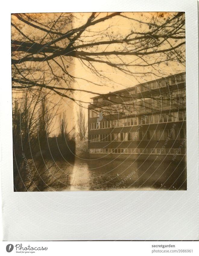 Gebäude mit Seeblick (leider sind alle im Homeoffice) Architektur trist Fluss Hamburg Äste Baum Außenaufnahme Menschenleer Tag Himmel Bauwerk Haus langweilig