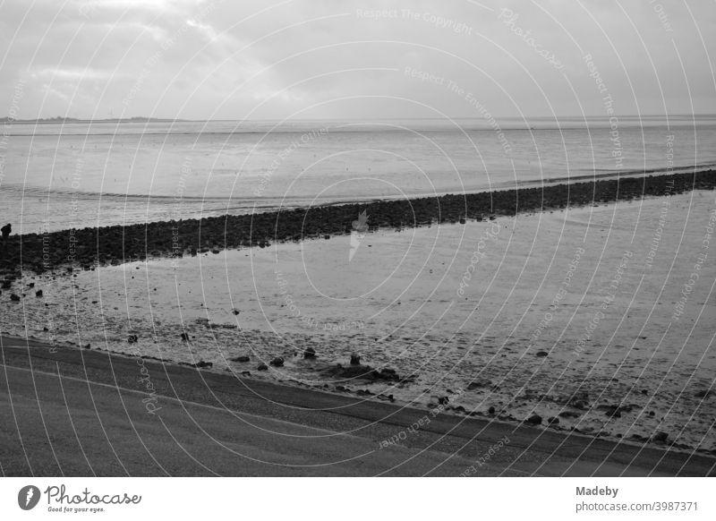 Das Weltkulturerbe Wattenmeer an der Küste der Nordsee in Norden bei Norddeich in Ostfriesland in Niedersachsen, fotografiert in klassischem Schwarzweiß Meer