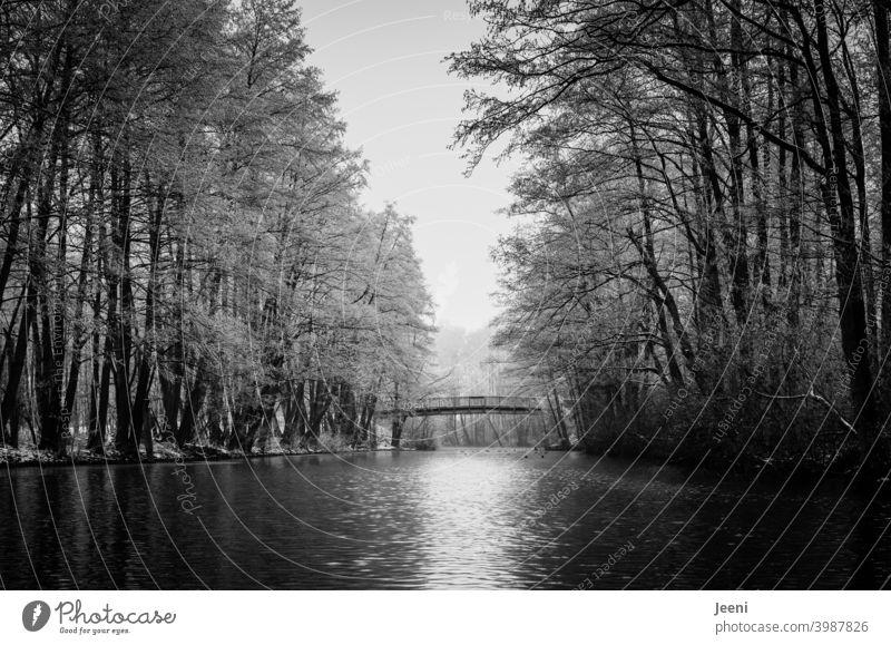 Auf dem kleinen Fluss die winterliche Ruhe genießen | Kanufahren im Winter bei Frost | Kleine Brücke aus Holz über das Wasser für Fußgänger Flussufer Kanutour
