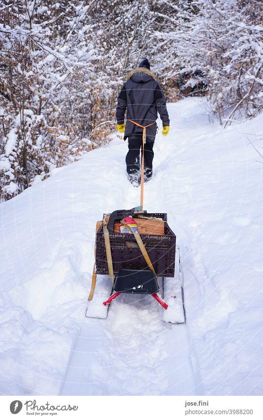 Mann läuft durch den Schnee und zieht mit einem Seil einen vollgepackten Schlitten hinter sich her. Laufen wandern Winter kalt Wald ziehen Holz Freude Natur