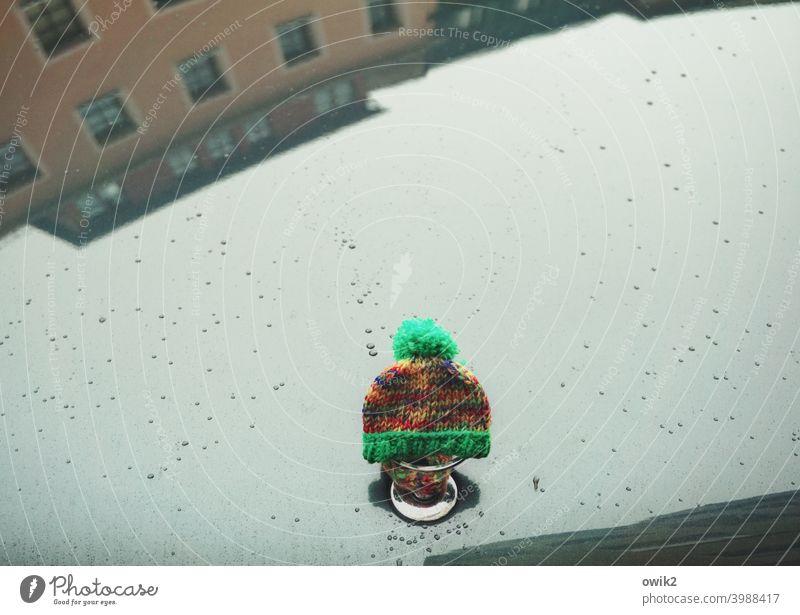 Sternwärmer PKW Kühlerhaube lackiert glatt glänzend Reflexion & Spiegelung Häuserzeile Spiegelbild Regentropfen Mütze Schutz Wärme Textfreiraum oben