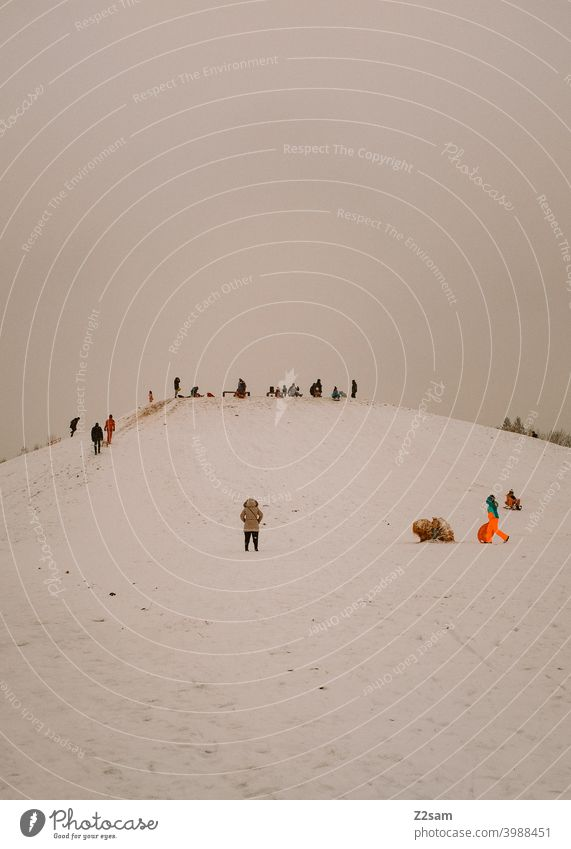 Rodler auf einem schneebedeckten Hügel winter landschaft kälte menschen gruppe rodeln schlittenfahren sonne warme farben Natur Landschaft Schlitten Farbfoto